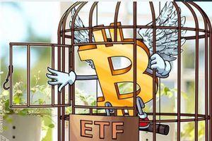 Giá tiền ảo hôm nay (9/2): Lý giải nguyên nhân khiến Bitcoin tăng gần 10% chỉ trong một ngày