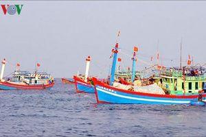 Quản lý và bảo tồn nguồn lợi thủy sản bằng khai thác có thời hạn