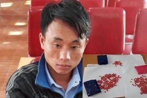 Nghệ An: Bắt thanh niên vận chuyển 438 viên ma túy qua biên giới