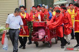 Hàng trăm người dân kéo đến đình làng ở Bắc Ninh xem chém lợn