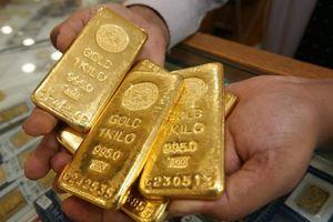 Giá vàng sẽ 'nổi sóng' trong năm Kỷ Hợi