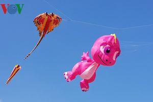 Độc đáo hàng trăm cánh diều nghệ thuật tung bay trên bầu trời