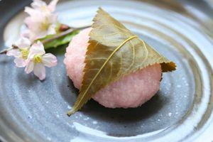Mùa xuân đến Nhật Bản ăn bánh đại phúc dâu, mochi hoa anh đào