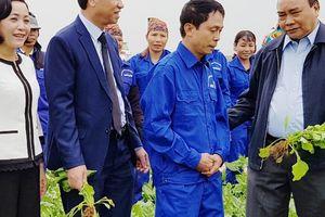 Thủ tướng: 'Nông nghiệp, nông dân và nông thôn là chủ trương lớn'