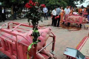 Làng Ném Thượng vẫn tổ chức nghi lễ chém lợn năm Kỷ Hợi 2019 dù kín đáo hơn