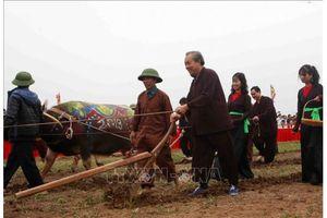 Phó Thủ tướng Trương Hòa Bình tham dự Lễ hội Tịch điền Đọi Sơn tại Hà Nam