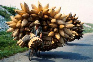 Ảnh cực độc về xe đạp ở Hà Nội năm 1990