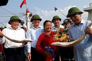 Vươn khơi đầu năm, ngư dân Quảng Trị trúng đậm 'lộc biển' 7 tỷ đồng