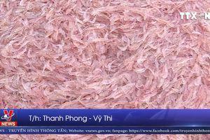 Ngư dân Đà Nẵng trúng 'lộc biển' đầu năm