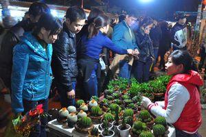 Chợ Viềng Nam Định: Tấp nập du khách đến phiên chợ cầu may đầu năm