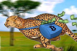 Giá tiền ảo hôm nay (12/2): Phí giao dịch Bitcoin đang ở mức thấp kỉ lục