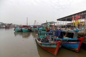 Trà Vinh phát triển tổ hợp tác khai thác hải sản xa bờ