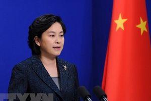 Trung Quốc bác tin tiến hành đối thoại với phe đối lập Venezuela