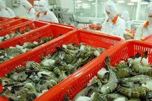 Xuất khẩu tôm Việt Nam sang Hàn Quốc: Dự kiến tăng gần 30% trong năm 2019