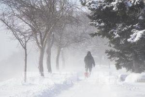 Canada và Nga trải qua mùa Đông khắc nghiệt