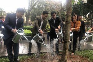 Hoàn Kiếm – Hà Nội : Hưởng ứng Tết trồng cây 'Đời đời nhớ ơn Bác Hồ' Xuân Kỷ Hợi