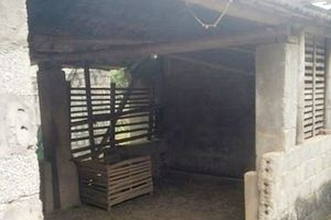 Thanh Hóa: Phát hiện trưởng công an xã treo cổ tại chuồng trâu