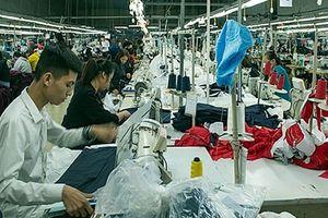 Thị trường lao động: Hứa hẹn và lạc quan