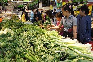 Giá rau xanh tại TP HCM ổn định trở lại sau dịp Tết
