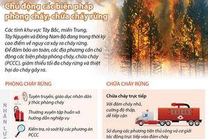 Chủ động các biện pháp phòng cháy, chữa cháy rừng