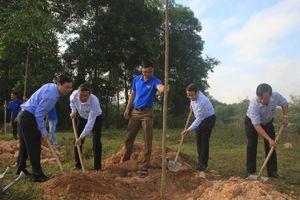 Quảng Trị: Ra quân trồng hàng trăm cây bóng mát nhân dịp đầu xuân mới
