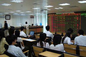 Nhà đầu tư chốt lời, thị trường quay đầu giảm điểm