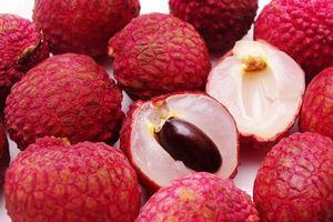 Khoa học nói gì về tác dụng chống ung thư của trái vải?