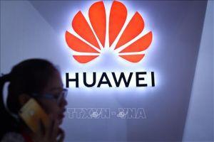 Séc tái khẳng định công nghệ của Huawei chứa rủi ro an ninh