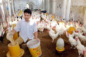 'Cận cảnh' tín dụng chính sách trên quê hương Kinh Bắc