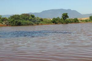 Nước ven bờ vịnh Đà Nẵng đổi màu bất thường: 2 thông số môi trường ô nhiễm