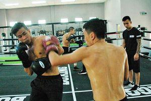 Võ sĩ Trần Văn Thảo luyện công xuyên tết để tranh đai vô địch thế giới