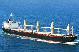 Nhiều cơ chế hỗ trợ, tăng sức cạnh tranh của đội tàu biển Việt Nam