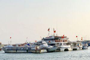 Quảng Ngãi: Hàng loạt tàu cao tốc Sa Kỳ - Lý Sơn nằm bờ vì vắng khách