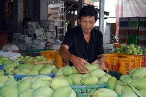 Xoài Việt Nam chính thức có 'visa' đi Mỹ sau 10 năm đàm phán