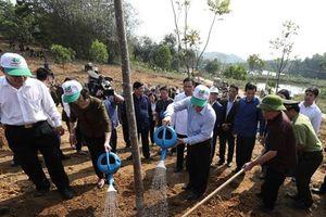 Sự kiện trong nước nổi bật tuần qua: Tết trồng cây Xuân Kỷ Hợi