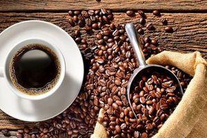 Giá cà phê hôm nay 18/2: Giảm nhẹ 100 đồng/kg vào đầu tuần