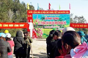 Xã Cao Phạ trồng cây đầu Xuân Kỷ Hợi năm 2019