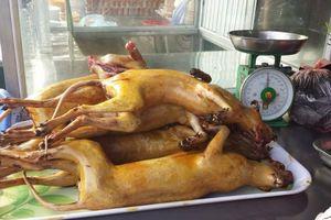 Có hay không thịt thú rừng bày bán ở chùa Hương?