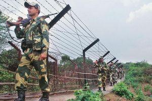 Ấn Độ điều thêm quân dọc theo biên giới Myanmar