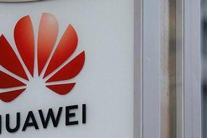 'Chính phủ Trung Quốc không tham gia hoạt động kinh doanh của Huawei'