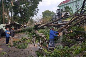 Dông lốc khiến Thái Nguyên thiệt hại trên 13 tỷ đồng