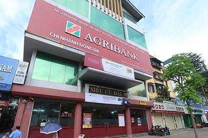 Muốn tham gia 'hồi sinh' ALC I của Agribank, nhóm nhà đầu tư Việt kiều vẫn phải chờ đợi thêm