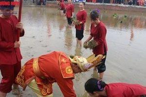 Phú Thọ: Nét đẹp văn hóa của Lễ hội Vua Hùng dạy dân cấy lúa