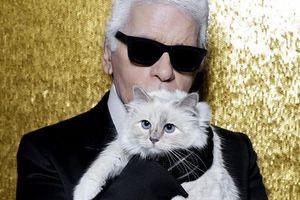 Mèo cưng thừa hưởng tài sản 200 triệu USD sau khi Karl Lagerfeld mất?