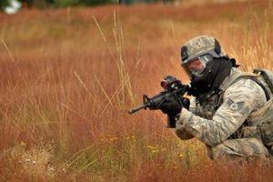 Quân đội Mỹ tuyên chiến với... 'cỏ Nga'