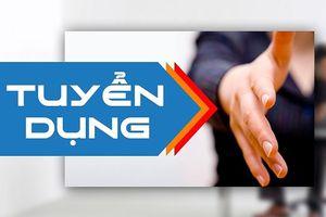 Quảng Bình: Kiến nghị thu hồi quyết định tuyển dụng theo diện thu hút với 3 trường hợp