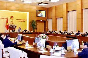 Ngày mai diễn ra Phiên họp thứ 31 của Ủy ban Thường vụ Quốc hội