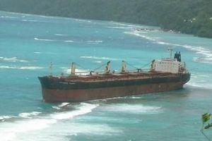 Dầu bắt đầu rò rỉ từ tàu mắc cạn gần đảo san hô lớn nhất thế giới