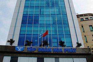 Công ty của con trai ông Trần Đình Long đã gom đủ 1 triệu cổ phiếu HPG