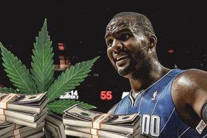 Cựu vô địch NBA phải đóng hơn 300 triệu để không ngồi tù vì bán cần sa